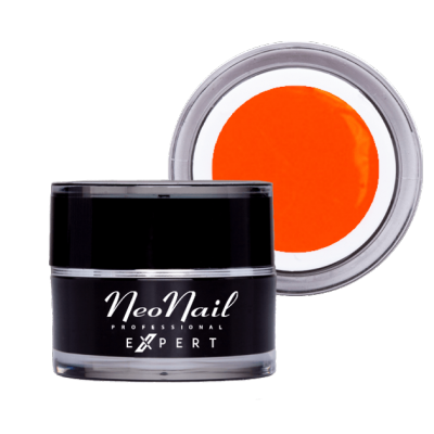 Paint UV Gel NN Expert 5ml...